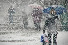 Васильков Михаил Иванович.Усыпанная снегом и дождём